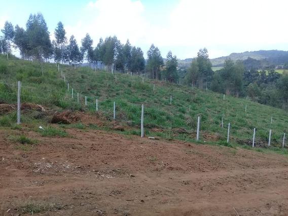 14c- : Terreno É Investimento