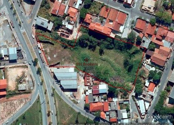 Terreno Com 7.000m² Em Betim - 14783