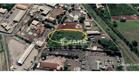 Terreno Para Alugar, 7993 M² Por R$ 8.000,00/mês - Santa Terezinha - Paulínia/sp - Te0265