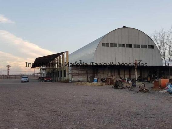 Se Alquila Predio Zona Industrial Maipu Mendoza