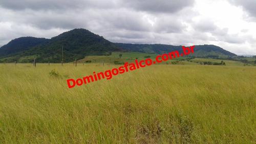 Venda - Sítio - Zona Rural - Rio Claro - Sp - D0241