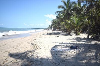 Venta Lote Frente A La Playa En Palomino