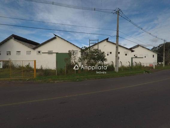 Barracão Para Alugar, 3500 M² Por R$ 21.000,00/mês - Braga - São José Dos Pinhais/pr - Ba0014