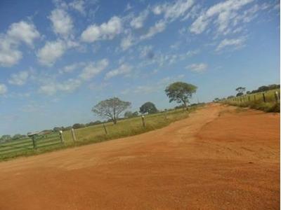 Fazenda Em Caseara - To, Dupla Aptidão - 432