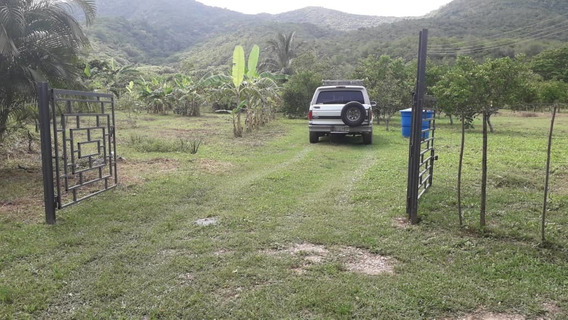 Parcela Con Hectáreas, En Ocumare De La Costa