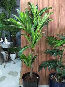 Planta Artificial Dracena Permanente 165cm