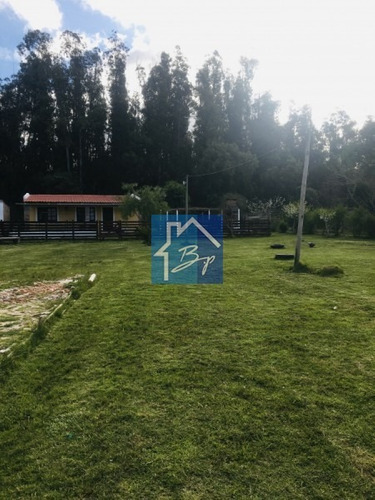 Chacra En Venta, Camino De Los Ceibos, Maldonado- Ref: 969
