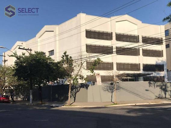 Aluga-se Galpão Com Escritórios Para Ocupação Monousuário De 2300 M², Na Várzea Da Barra Funda Em São Paulo - Te0002