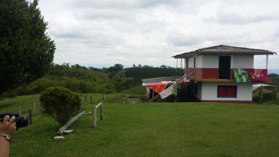 Finca Ganadera En Filandia, Quindio