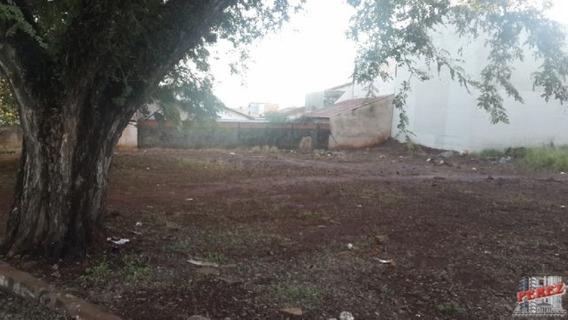 Terrenos Para Alugar - 13650.2924