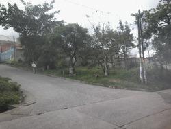 Terreno En Renta Palencia, Guatemala (geosaveracca@gmail.com