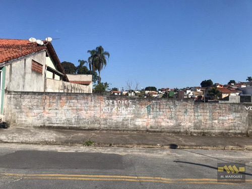 Imagem 1 de 3 de Terreno Em Vila Oliveira  -  Mogi Das Cruzes - 3838