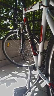 Bici Raptor Tomaselli 26