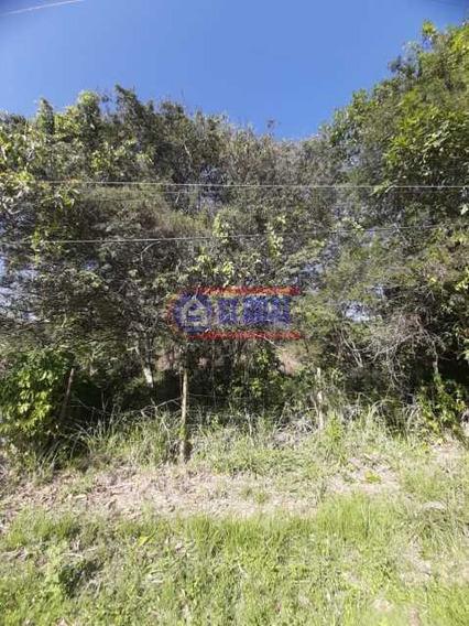 Terreno-à Venda-são José Do Imbassaí-maricá - Mauf00334