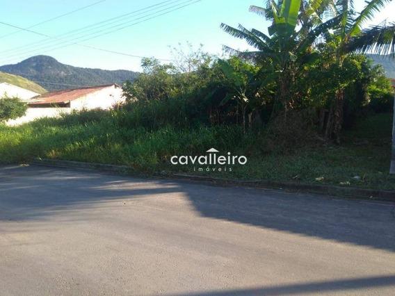Ótimo Terreno Multifamiliar Em São Bento Da Lagoa - Te0904