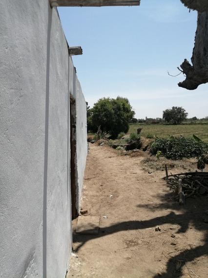 Vendo Fundo San Andrés - Pisco