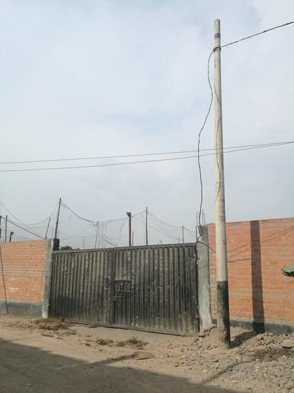 Alquilo Terreno 600m, Carabayllo Cerca Avenida Luz Trifasica