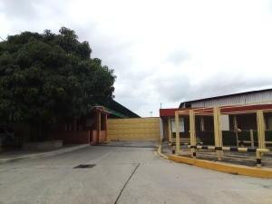 Galpon En Venta Ciudad Alianza Guacara Cod 20-5070ez