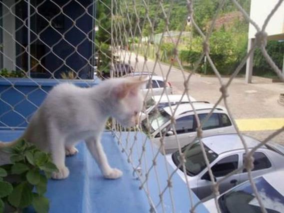 Redes Proteccion Niños, Gatos Bebés, Mascotas Malla Ventanas