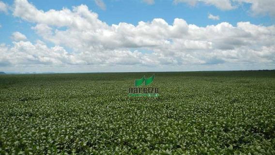Fazenda À Venda, 9100000 M² Por R$ 15.000.000,00 - Zona Rural - São Francisco Do Maranhão/ma - Fa0030