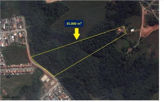 Terreno Para Venda Em Fazenda Rio Grande, Não Cadastrado - 50.125
