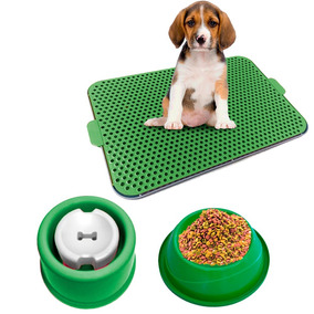 Kit Dog Xixi Dog Bebedouro Pelo Longo Comedouro Verde