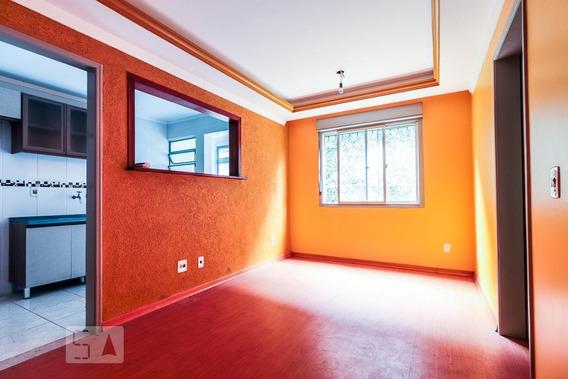 Apartamento Para Aluguel - Camaquã, 1 Quarto, 40 - 893111119
