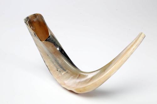 Shofar Instrumento De Carnero, A5, 52 Cms, +manual