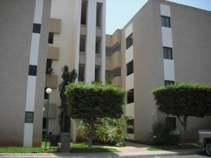 Apartamentos En Alquiler. Oa