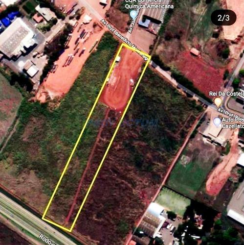 Área Para Aluguel Em Betel - Ar272947