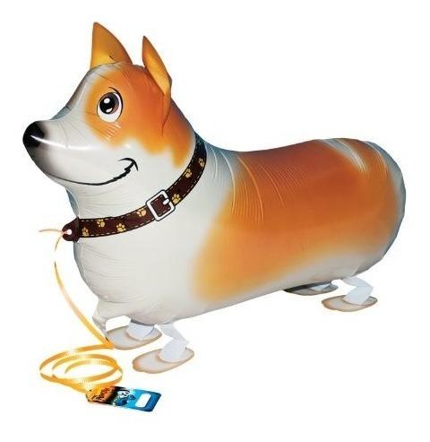 Mis Propios Globos Para Mascotas Corgi Animal Domestico