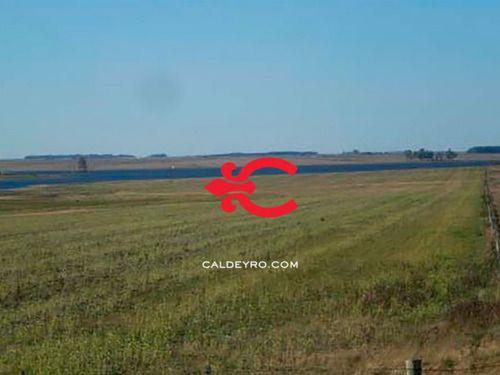 Campo Agrícola El Lago Ref. 1343