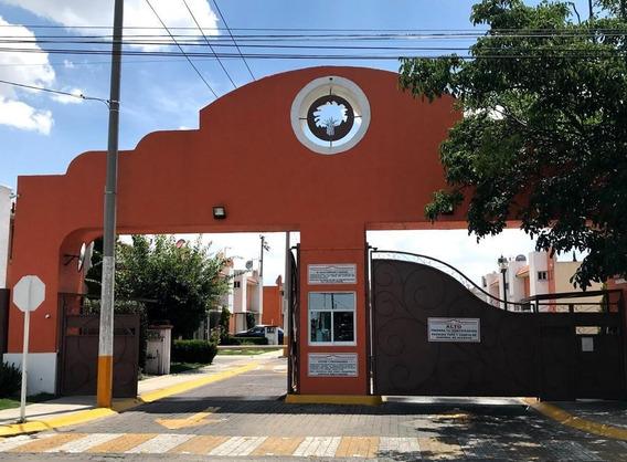 Casa En Renta Dentro De Fraccionamiento Ahuehuetes En Toluca
