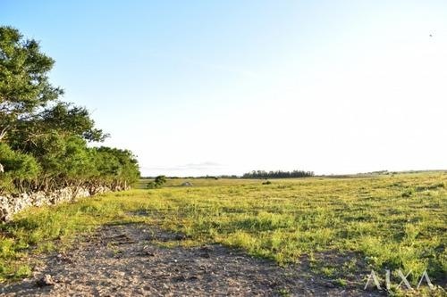 Venta Chacra 5 Hectáreas - Pueblo Eden- Ref: 209