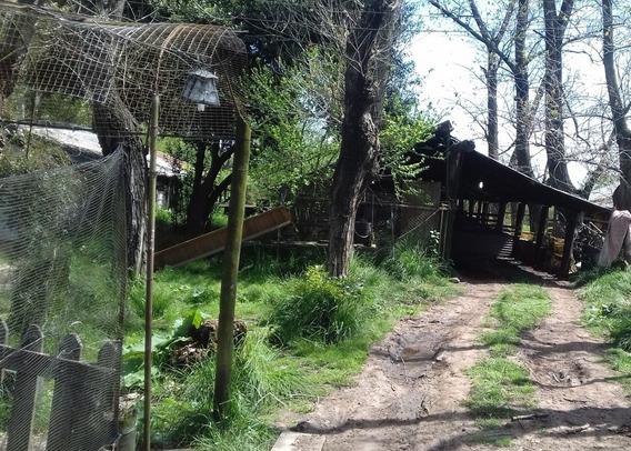 Campo 3 Has A 7 Km De La Estación Glew Apto Criadero