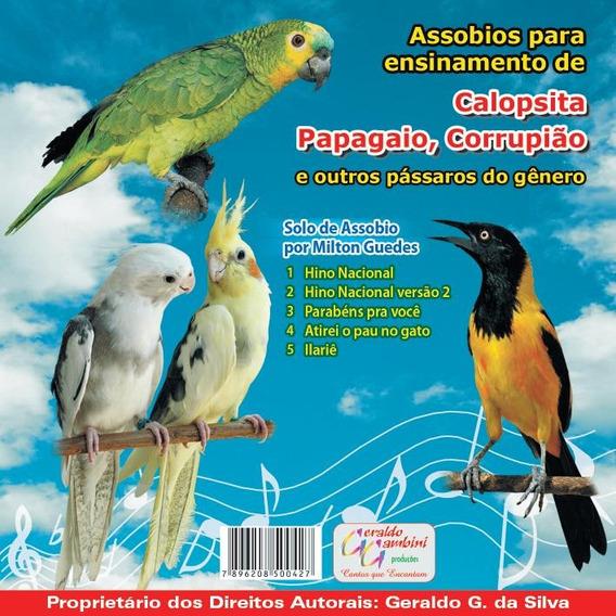 Cd Assobios Ensinamento De Calopsita, Papagaio, Corrupião