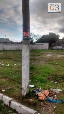 Terreno Residencial À Venda, Porto, Pelotas. - Te0003