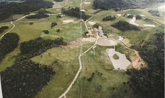Chacara Em Condominio Rural Em Rancho Queimado - V-79010