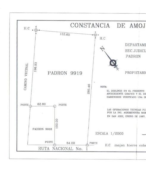 Alquilo Campo X Metro Cuadro En Libertad Sobre Ruta Nacional