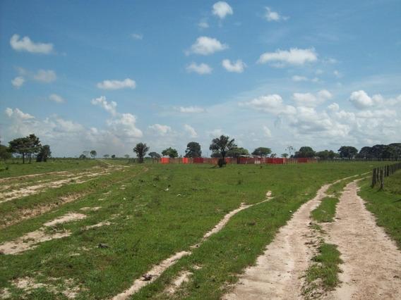 Finca En Venta 04265330106 // Alianza Inmobiliaria