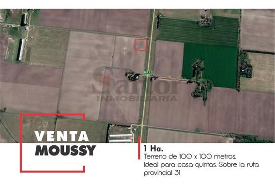 Campo 1 Ha Moussy