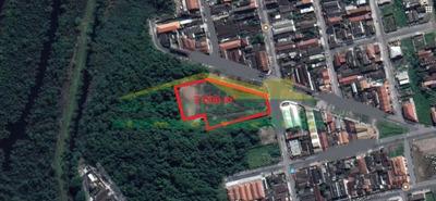 Terreno No Tude Bastos Com 7.000 M², Prontinho Para Construir, Só Na Imobiliária Em Praia Grande. - Mp11457