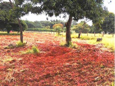 Terreno De Chacara - Valparaiso Goiás Parque Marajó