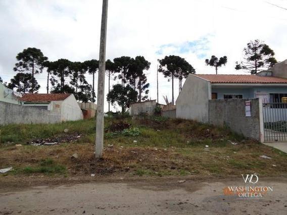 Terreno À Venda, 439 M² Por R$ 180.000,00 - Rio Pequeno - São José Dos Pinhais/pr - Te0171