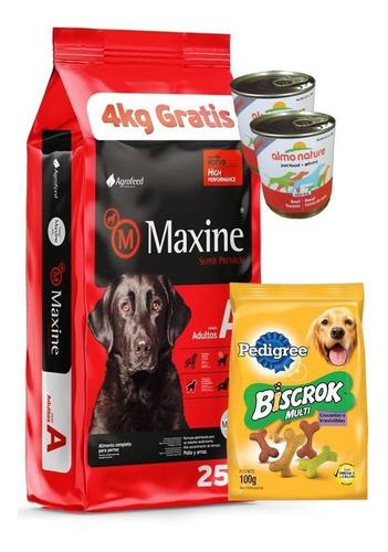 Imagen 1 de 3 de Maxine Adulto 21+4(25kg) + 2 Pate + Biscrok