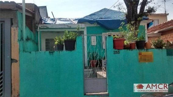 Terreno Residencial À Venda, Vila Erna, São Paulo. - Te0062