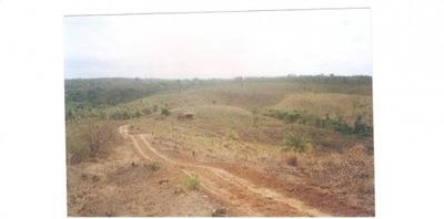 Venda Fazenda Urbano Santos Brasil - 4139