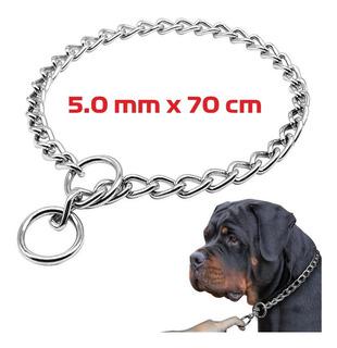 Collar Cadena De Ahorque Ruttweiler Dogo Pitbull Boxer