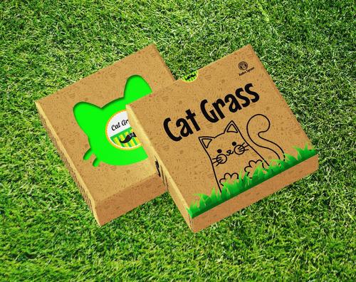 Hierba Para Gatos Cat Grass Kit De Siembra