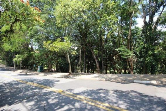 Terreno-são Paulo-morumbi | Ref.: 353-im63438 - 353-im63438